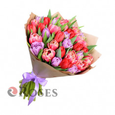 "Bouquet ""Munster"" 35 tulips"